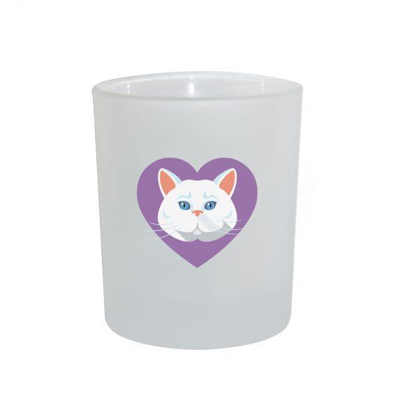 chat blanc ph